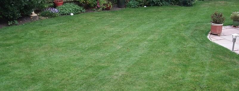 Stiga havefræser til vending af jorden inden plantning
