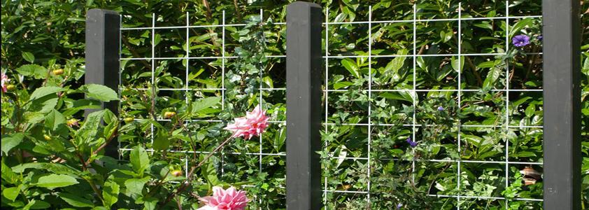Plus espalier - Se det store udvalg af hegn på 10-4.dk