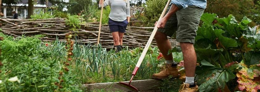 Havehakke til at fjerne ukrudt eller løsne jord - 10-4.dk