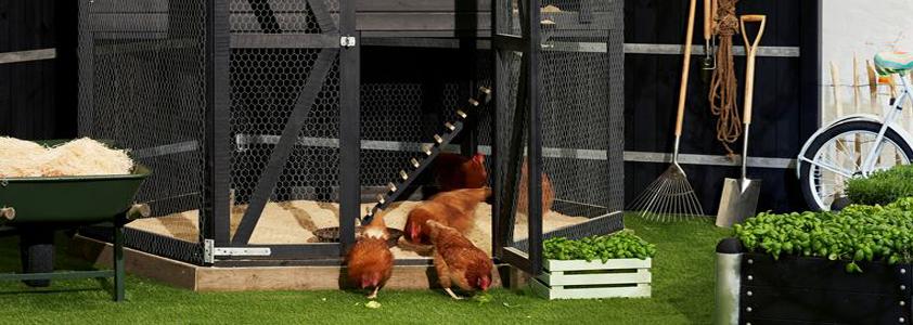 Køb dit hønsehus online idag på 10-4.dk