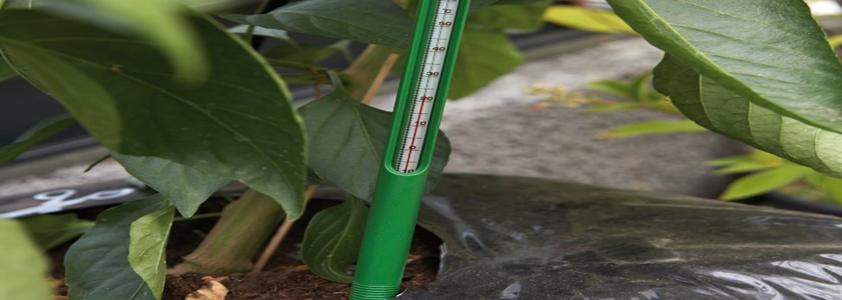 Drivhus jordtermometer fra Juliana